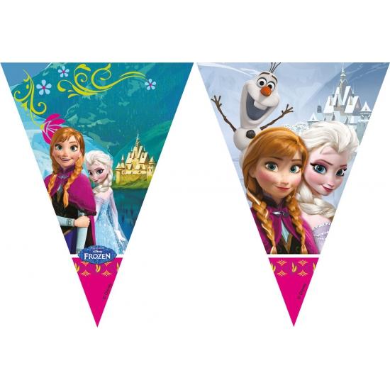 Frozen vlaggenlijn 2 meter