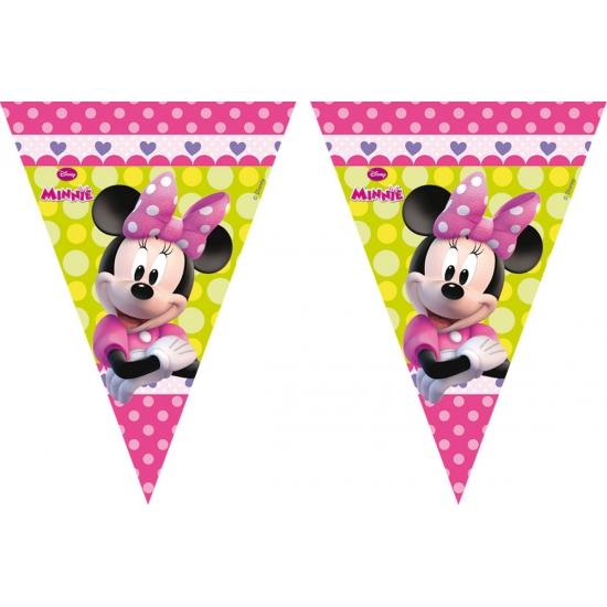 Minnie Mouse vlaggenlijn 3 meter