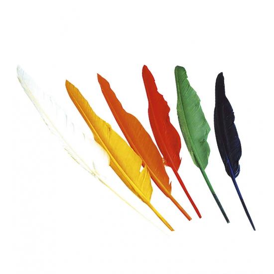 12x stuks Indianen veren gekleurd 25-30 cm